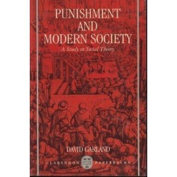 Punishment And Modern Society