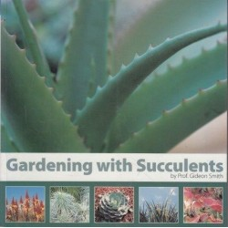 Gardening With Succulents