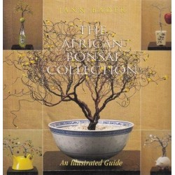 The African Bonsai Collection