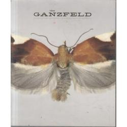 The Ganzfeld 3