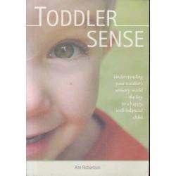 Toddler Sense: Understanding Your Toddler's Sensory World
