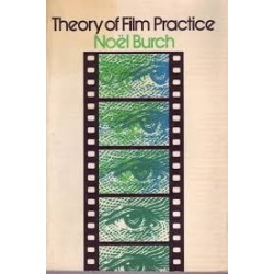 Theory of Film Practice