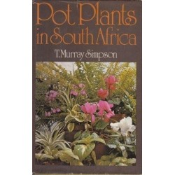 Pot Plants in South Africa