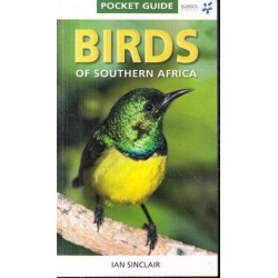 Birds Of Southern Africa (Pocket Guide)