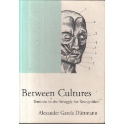 Between Cultures - Tensions in the Struggle for Recognition