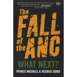 The Fall Of The Anc - What Next?