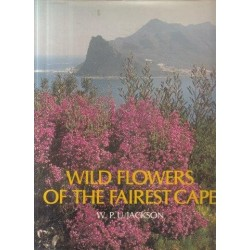 Wild Flowers of the Fairest Cape