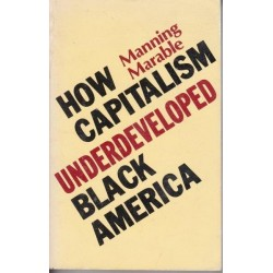 How Capitalism Underdeveloped Black America - Problems in Race, Political Economy, and Society