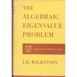 The Algebraic Eigenvalue Problem