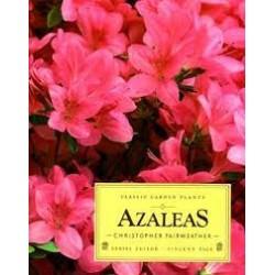 Azaleas (Classic Garden Plants)