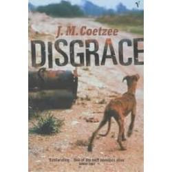 Disgrace (Hardback)