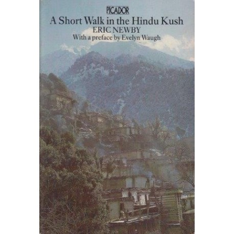 A Short Walk in the Hindu Kush