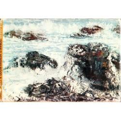 Kelp Coast