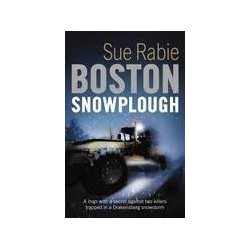 Boston Snowplough: A David Roth Thriller
