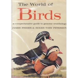 The World of Birds: A Comprehensive Guide to General Ornithology