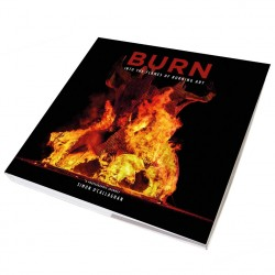 Burn Into the Flames of Burning Art