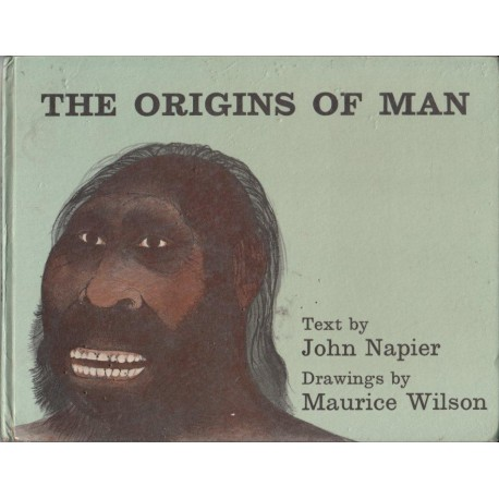 The Origins of Man