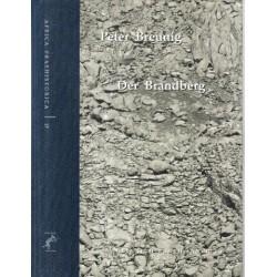 Der Brandberg. Untersuchungen zur Besiedlungsgeschichte eines Hochgebirges in Namibia