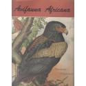 Avifauna Africana