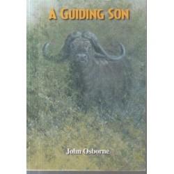A Guiding Son