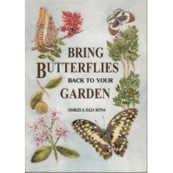 Bring Butterflies Back To Your Garden
