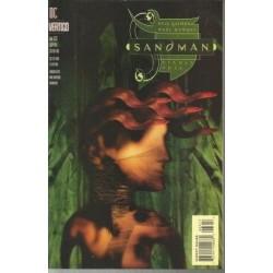 The Sandman 63
