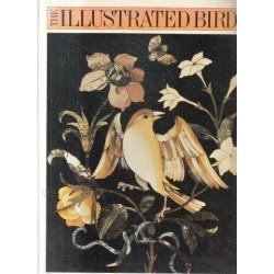 The Illustrated Bird